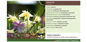 «Энциклопедия растений»